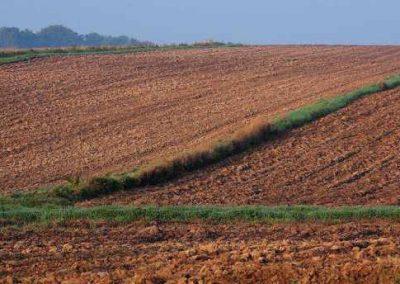 Agricultural land Tarnowa Łąka